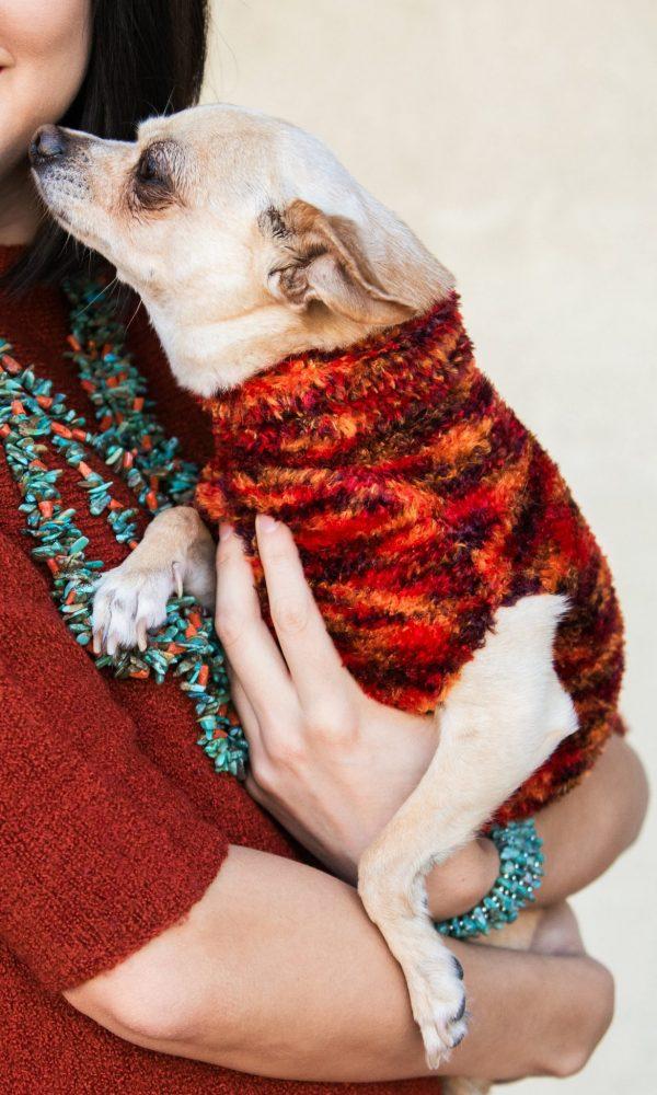 Dog fashion does exist.
