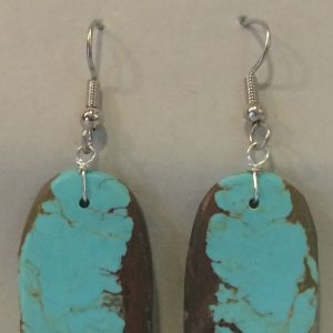 Photo of Turquoise Earrings